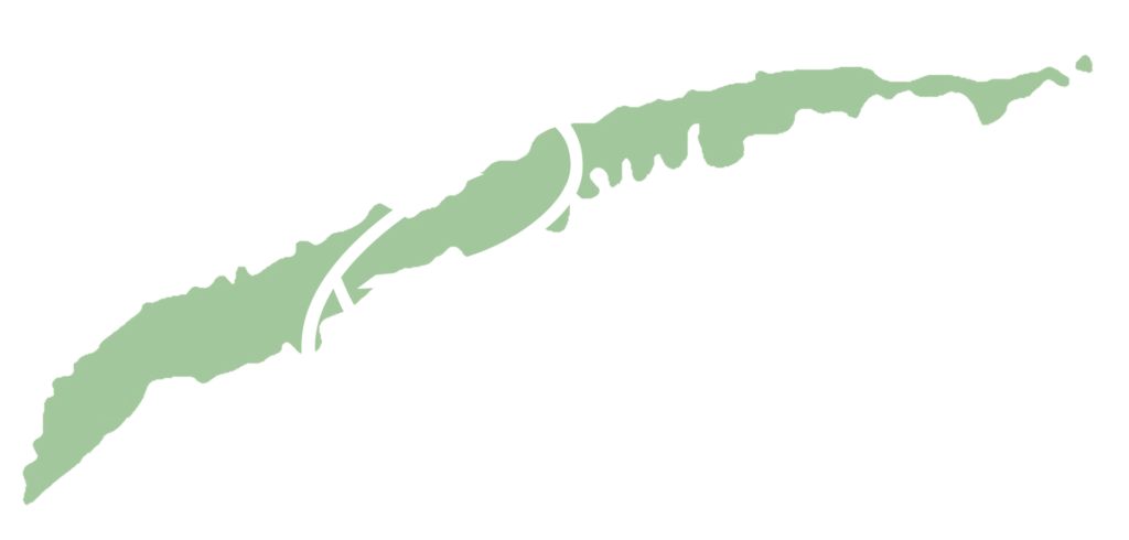Reach Roatan - Steven Jones